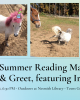 three photos of Irene the mini horse pastel gradient background tails and tales nesmith library